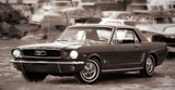 1964.5-1966 Ford Mustang: An epic 50 year journey