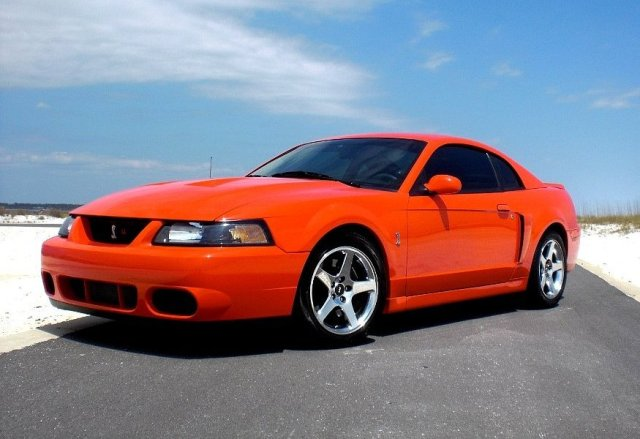 2003 2004 Ford Mustang Svt Cobra The Terminator The